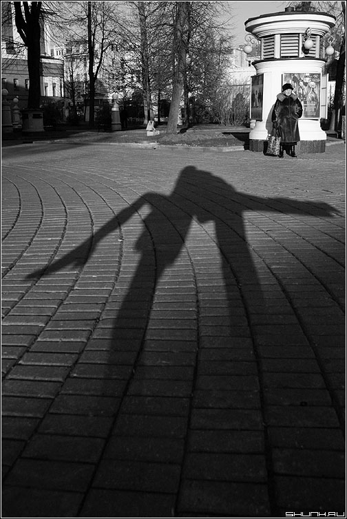 Теневое фото - тень бабушка афиша чёрнобелое эрмитаж фото фотосайт