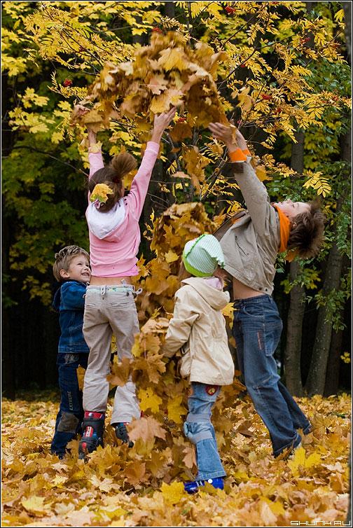 Осень в год семьи - дети листва осень радость позитив фото фотосайт