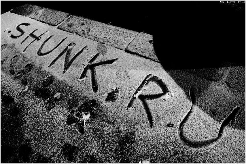 Первый снег 19.11.2008 - снег первый зима 2008 shunk надпись асфальт фото фотосайт