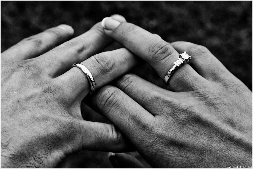 Be married - жених невеста кольца свадьба чужая руки фото фотосайт