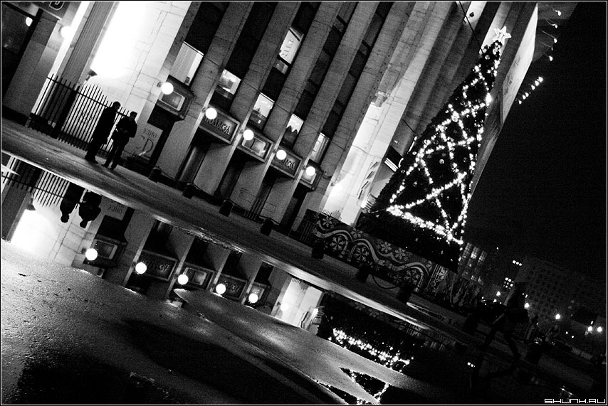 С подплывающим Новым Годом! - декабрь лужи елка дождь олимпийский елка ёлка 2009 фото фотосайт