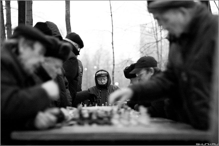 Председатель - шахматы чёрно-белое люди мужики деды фото фотосайт