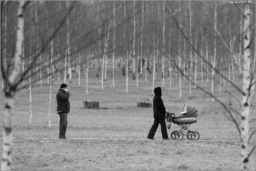 Разговор - пара коляска мужик березы роща чёрно-белые фото фотосайт