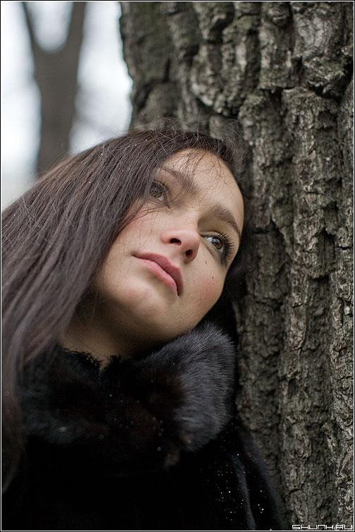 Грусть - мальвина грусть портрет дерево взгляд фото фотосайт