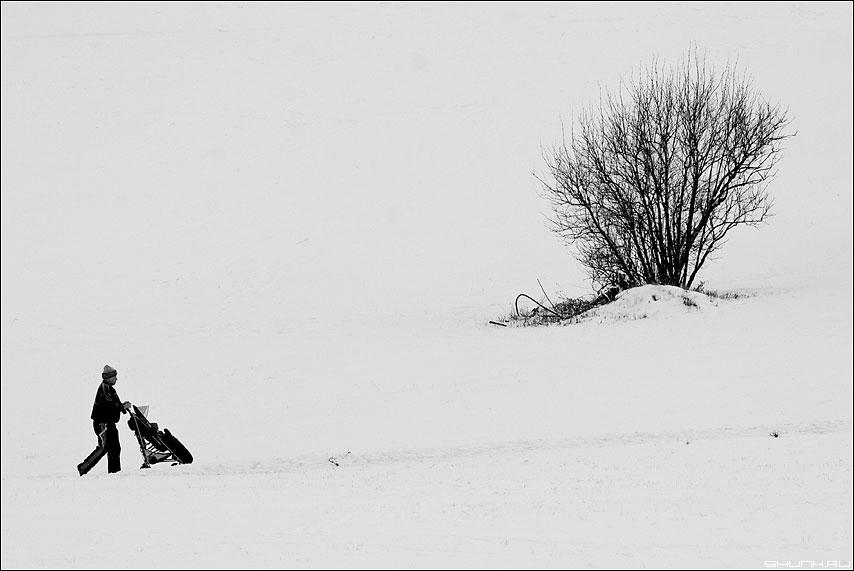 Коля-сочное - снег зима коляска куст дерево чёрно-белый фото фотосайт