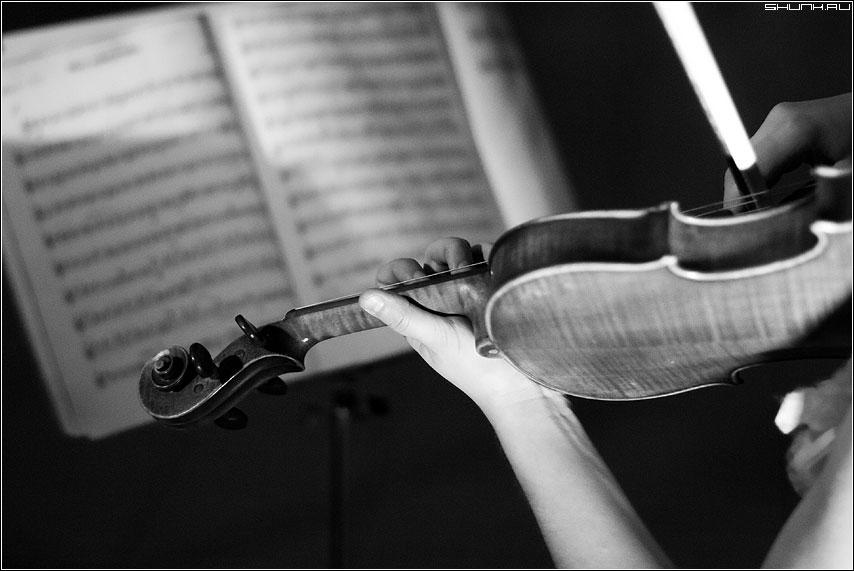 Играя классику.. - скрипка ноты чёрнобелое рука смычок концерт фото фотосайт