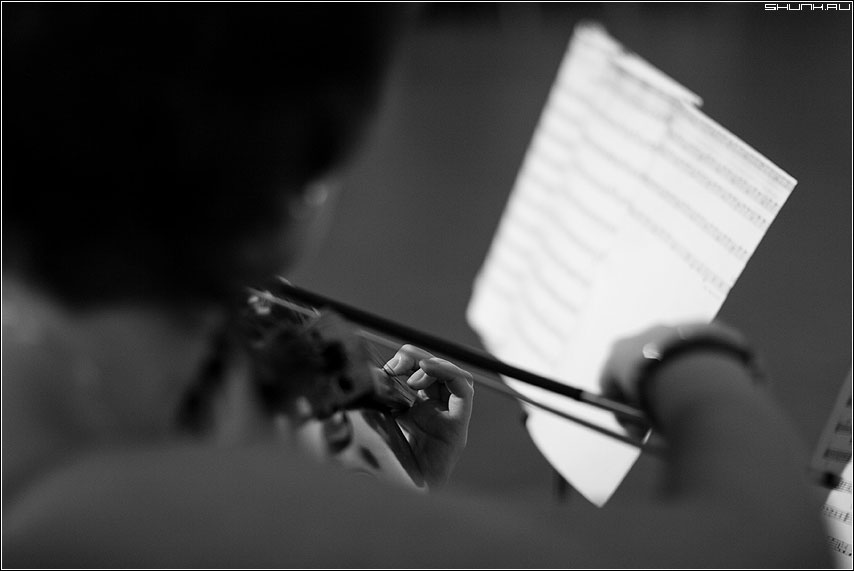 Скрипач - скрипка струна ноты чёрно-белые рука музыкант фото фотосайт