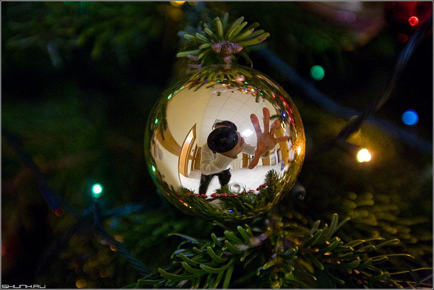 С Новым 2009 годом - шар елка рука отражение 5d праздник огни новый год 2009 открытка фото фотосайт
