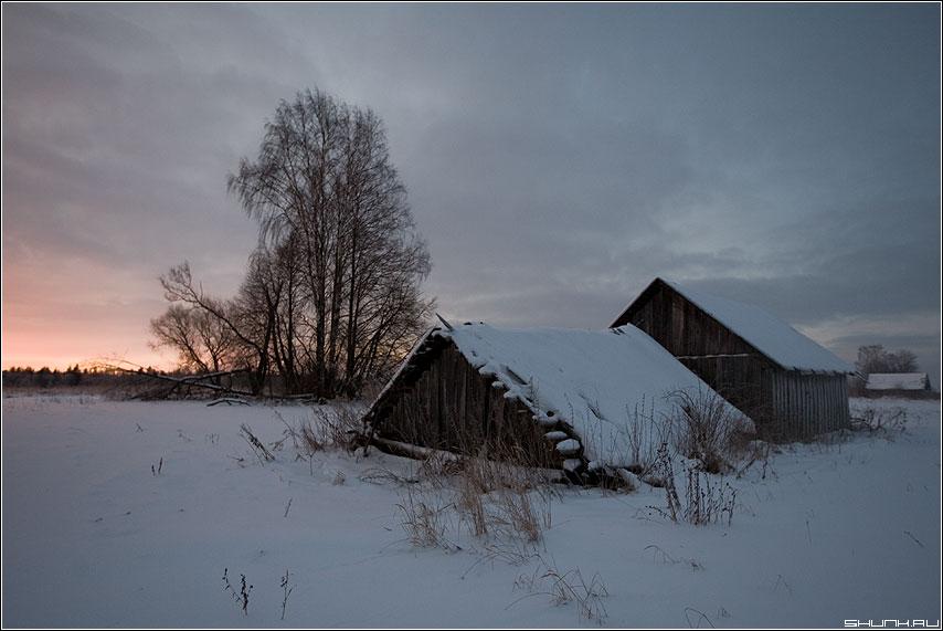 Утро третьего дня года - утро деревня сараи рассвет снег зима деревня бели фото фотосайт