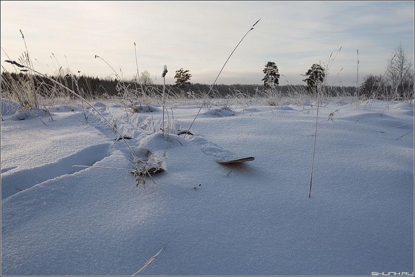 Лыжи у печти стоят?... - лыжи снег деревня зима снег мороз -26 таложня фото фотосайт