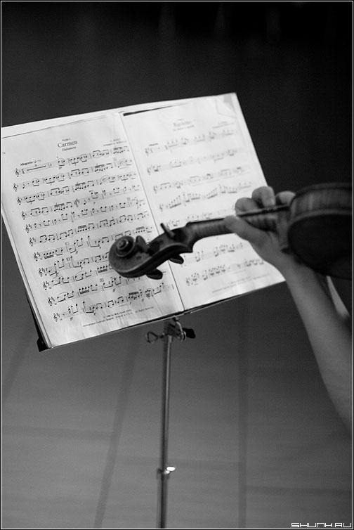 Музыка души - скрипка ноты чёрнобелое рука смычок концерт фото фотосайт