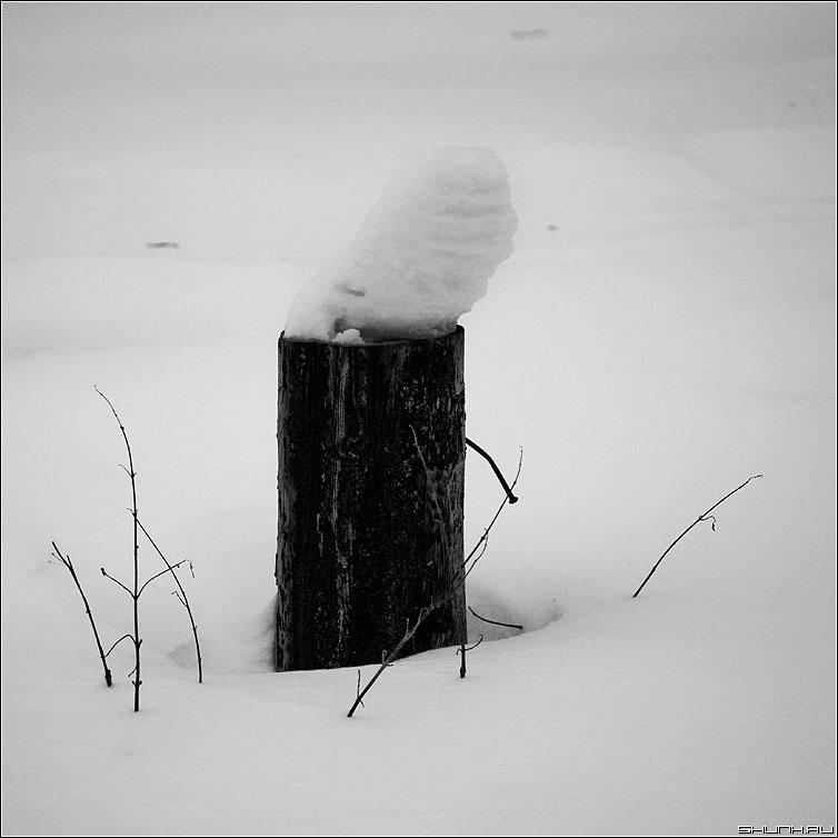 Шапка - столб снег зима квадрат чёрно-белая фото фотосайт