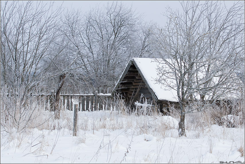Заглянем к соседям - дом сарай зима снег деревня зимнее цвета фото фотосайт