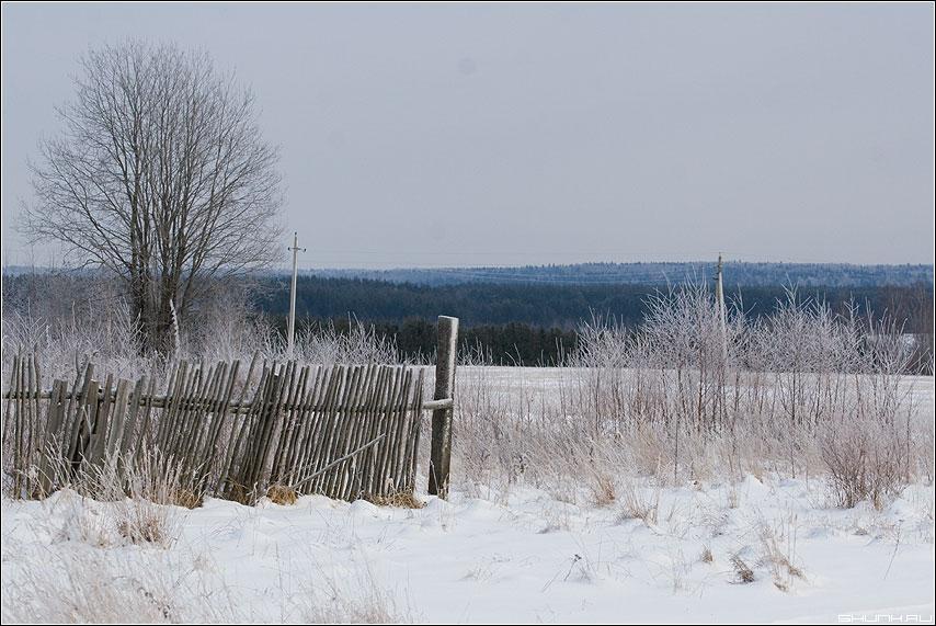Синяя зима - снег зима деревня синий забор небо дерево фото фотосайт