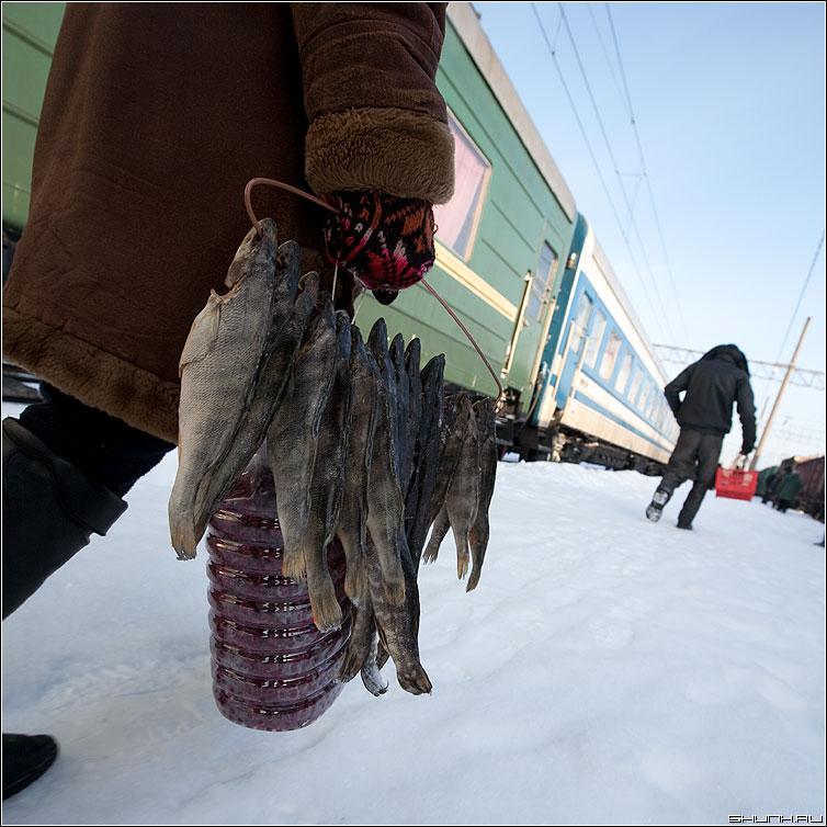 Улов - рыба вагоны состав поезд бабушка продавцы карелия дорога фото фотосайт