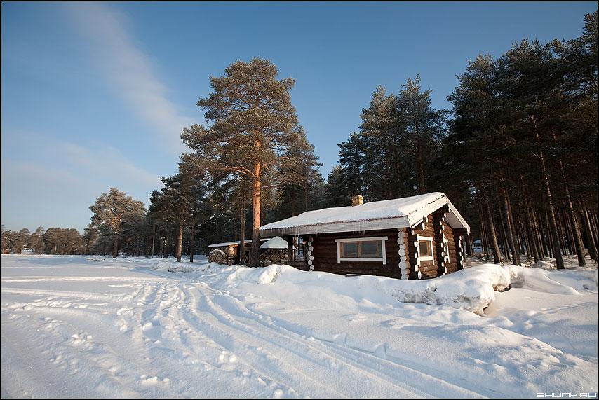 Баня в медвежке - карелия баня по-черному берег сосны солнце зима фото фотосайт
