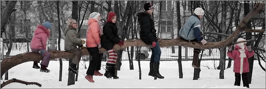 Сороконожка - дети дерево зима ствол цвет фото фотосайт