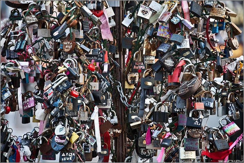 Навсегда - замки дерево третьяковка элементы любовь фото фотосайт
