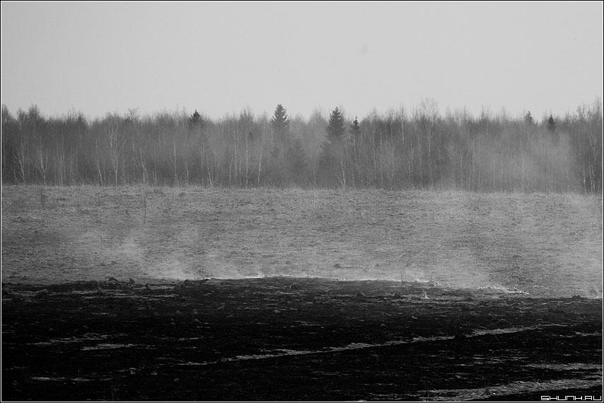 Черный и полутона - цвета поле лес небо огонь дым чёрнобелая деревня фото фотосайт