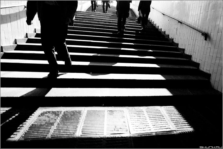Идет... качается... - тени переход полосы полоски чёрно-белые фото фотосайт