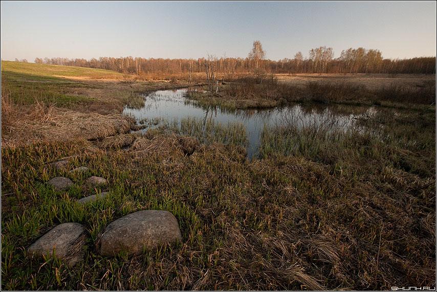 Бобровые владения - речка камни весна май крюково глуш фото фотосайт