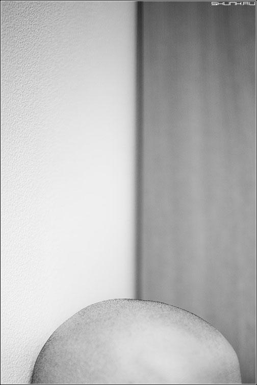 Портрет - голова лысина серега чёрнобелый серж фото фотосайт