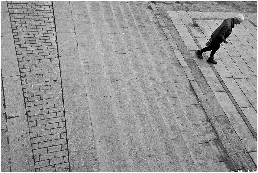Теорема Варшавского о граничной гладкости конформного отображения - мужик манежка бомж кирпичи чёрнобелая линии теорема фото фотосайт