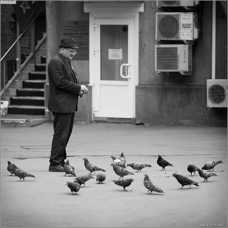 Голуби, голуби - мужик голуби квадратная улица чёрно-белая фото фотосайт