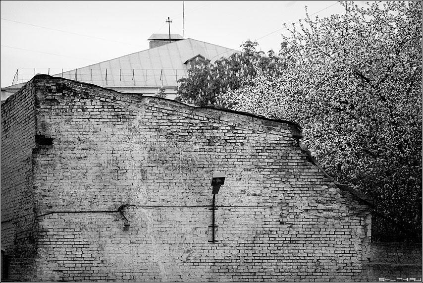 Весна в одном из московских двориков - весна двор кирпичи цвет чёрно-белые фото фотосайт