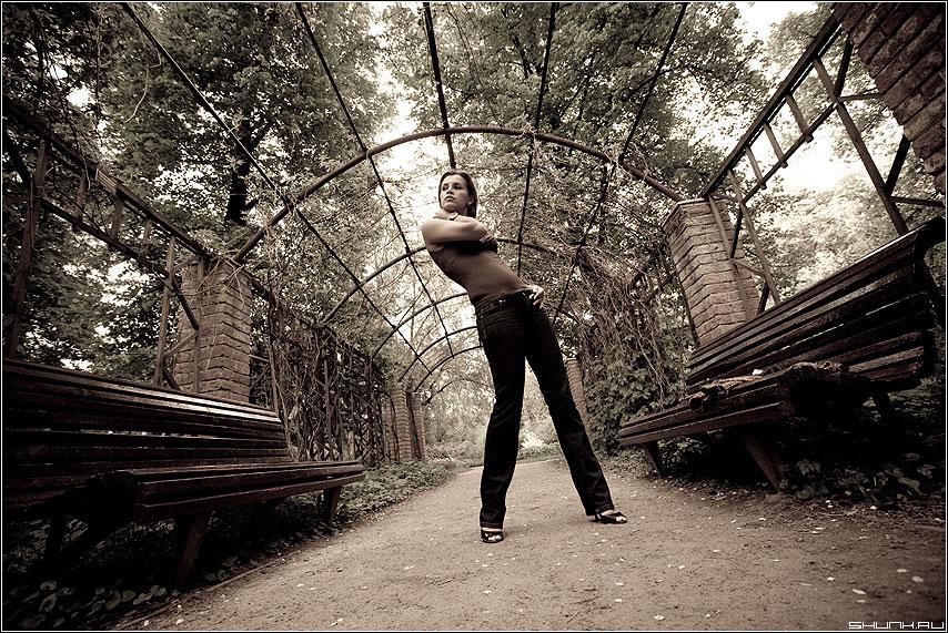 В парке - лана прогулка скамейки модель виноглад кирпичи фото фотосайт