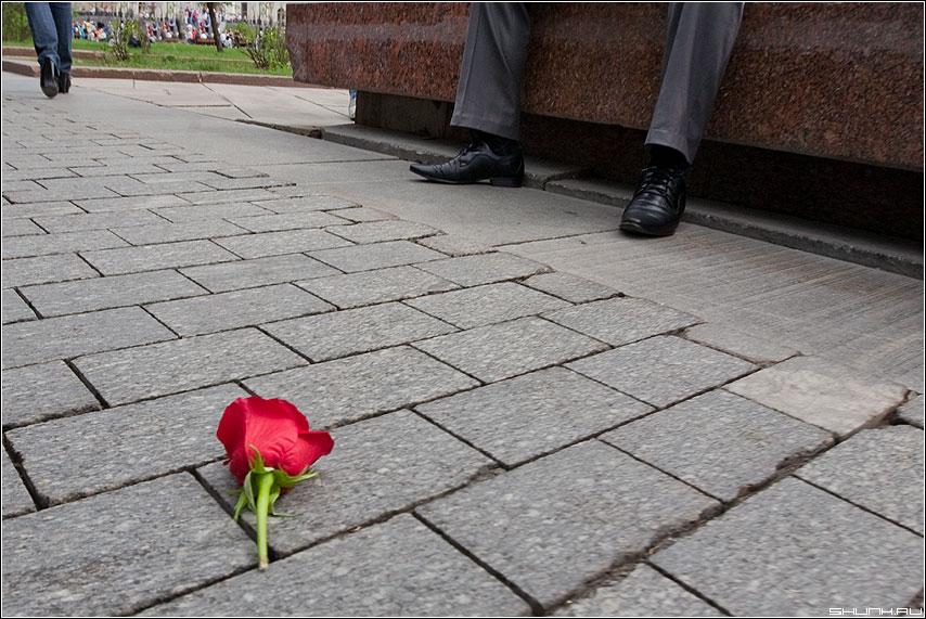 Ушла - он она ноги роза брусщатка поклонка нелюбовь фото фотосайт