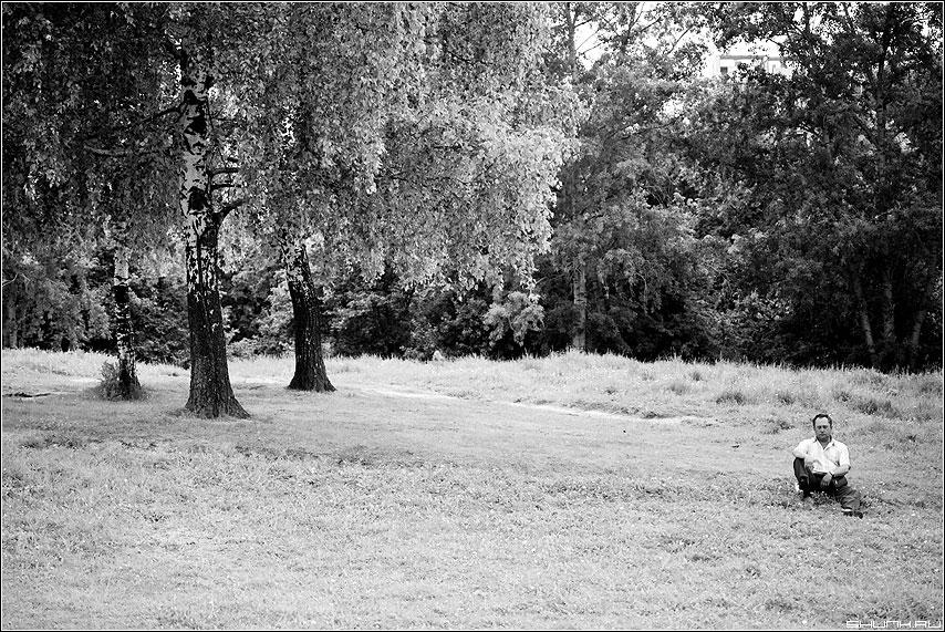* * * - человек березы деревья склон парк чёрнобелое фото фотосайт