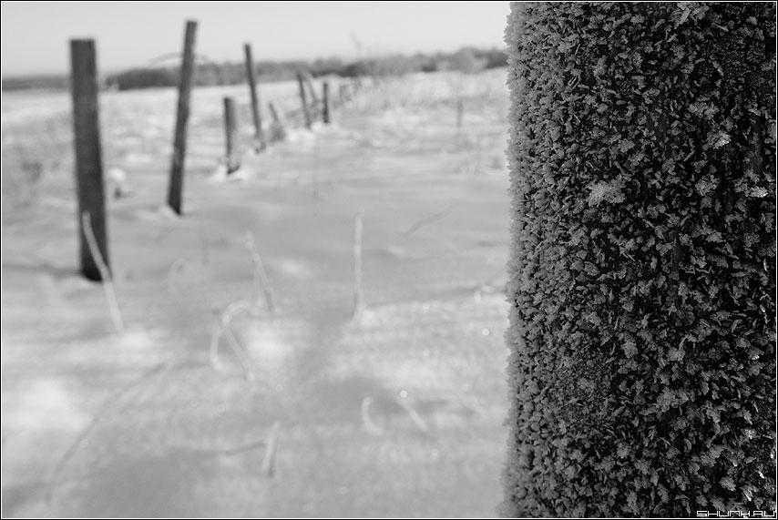 Околица - Иней столб деревня таложня зима столбы снег фото фотосайт