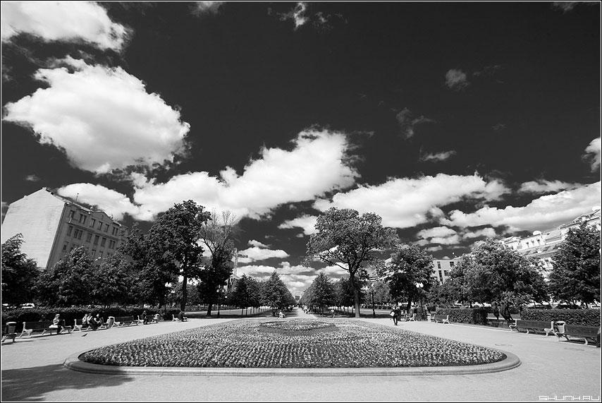 Черно-белый бульвар - чёрнобелое бульвар небо облака клумба фото фотосайт