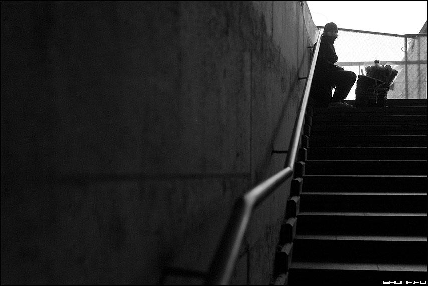 Цветочница - переход перила вверх цветочница чёрнобелое ступени фото фотосайт