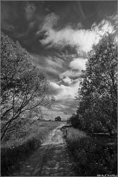 Дом в поднебесье - небо чёрнобелое хаос крюково деревья кусты фото фотосайт