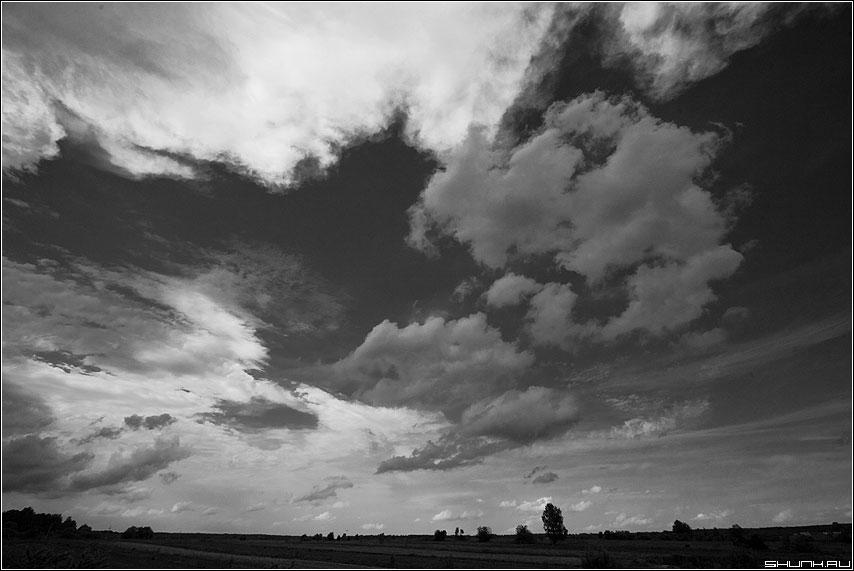 Небесный хаос над полями - небо небесное хаос облака фильтр шустиково чёрнобелое фото фотосайт