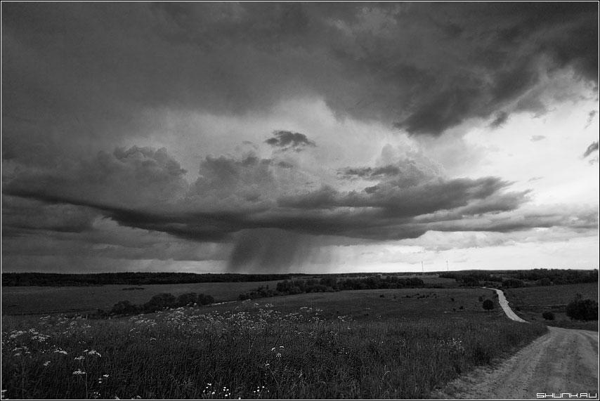 Про локальные дожди (чб) - чёрно-белое дождь тучка деревня вышгород дорога поле фото фотосайт
