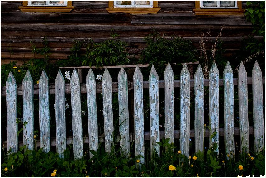 З.А.Б.О.Р. - деревня таложня забор окна дом элементы фото фотосайт