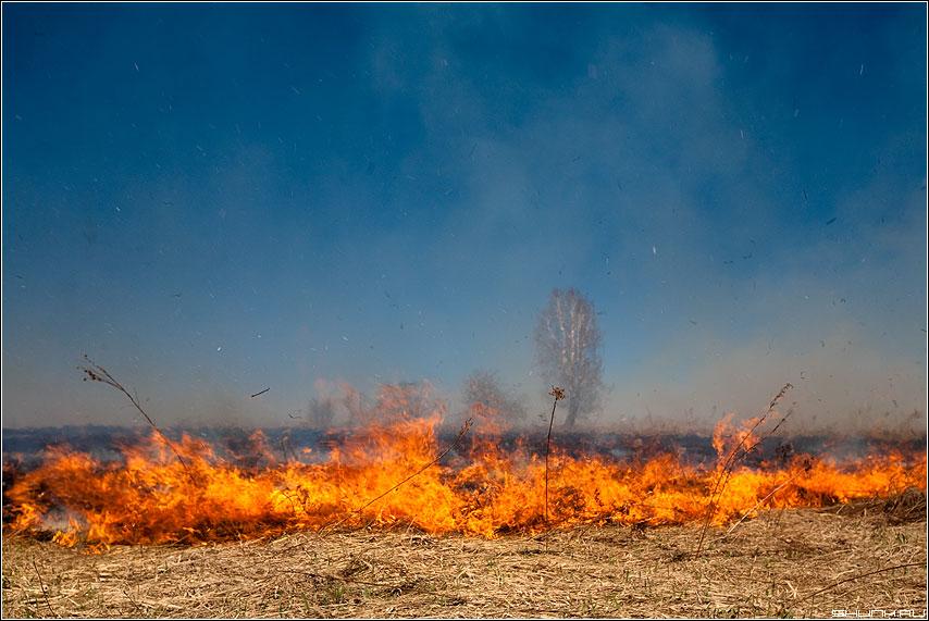 Весенние пожары - пожар трава небо дым огонь пламя деревня цвет фото фотосайт