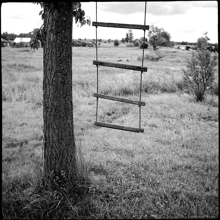 Мне бы в небо - небо лестница дерево деревня ильинское квадратное фото фотосайт