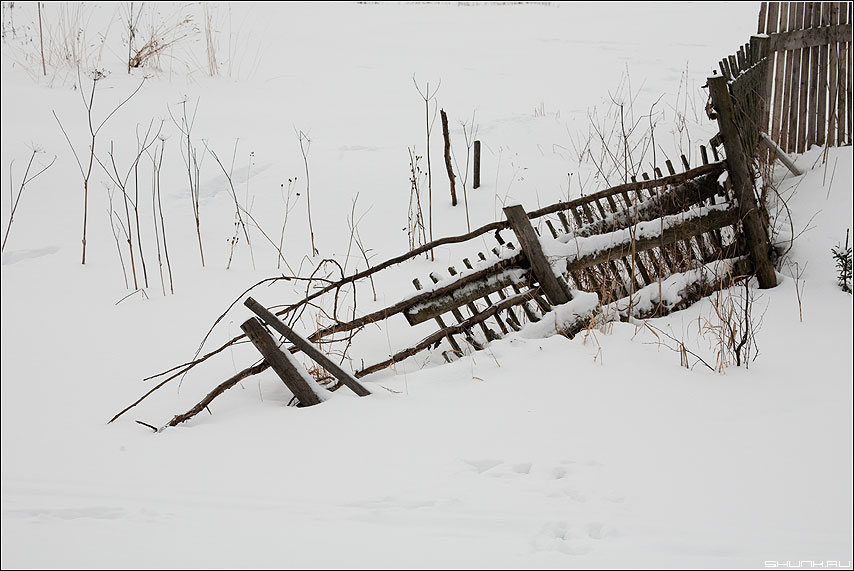 Про заборы - зима забор снег коричневый деревня кустики фото фотосайт