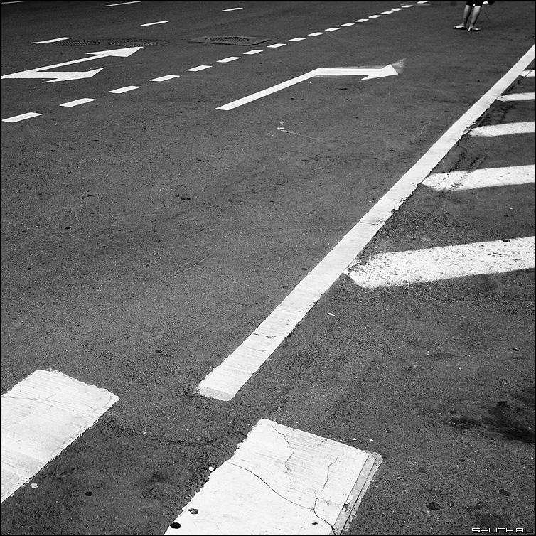 Разметко - разметка дорога указатели стрелки квадратное чёрнобелое фото фотосайт