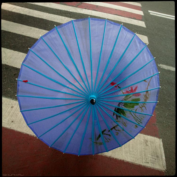 Гейша на переходе в центре столицы - москва среднийформат зонтик полосы гейша фото фотосайт