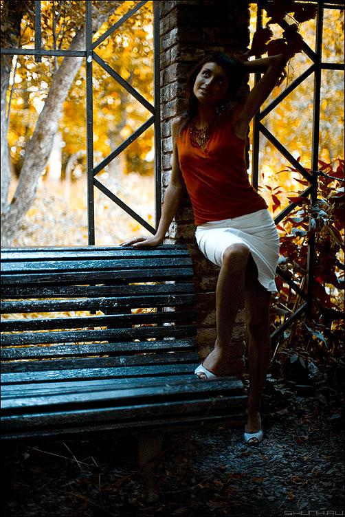 Осенняя - анна сад аптекарский виноград кирпичи обработка стилизация уличное туфли лавочка фото фотосайт