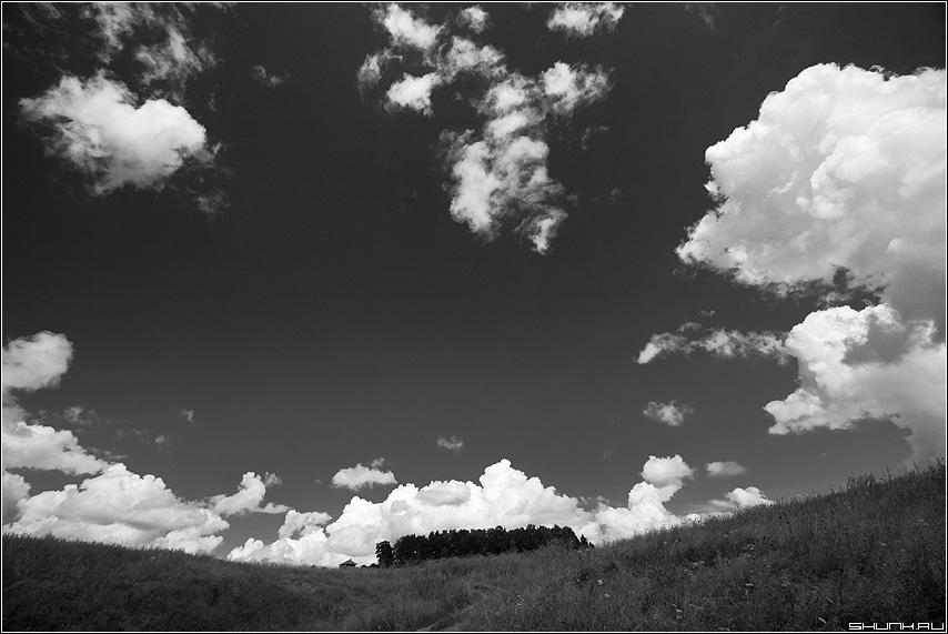 Небо - небо чёрнобелое облака земля лес небесное фото фотосайт