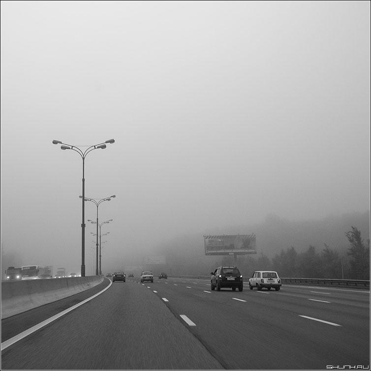 Мкадовские туманы - туман мкад кольцевая утро август машины авто фото фотосайт