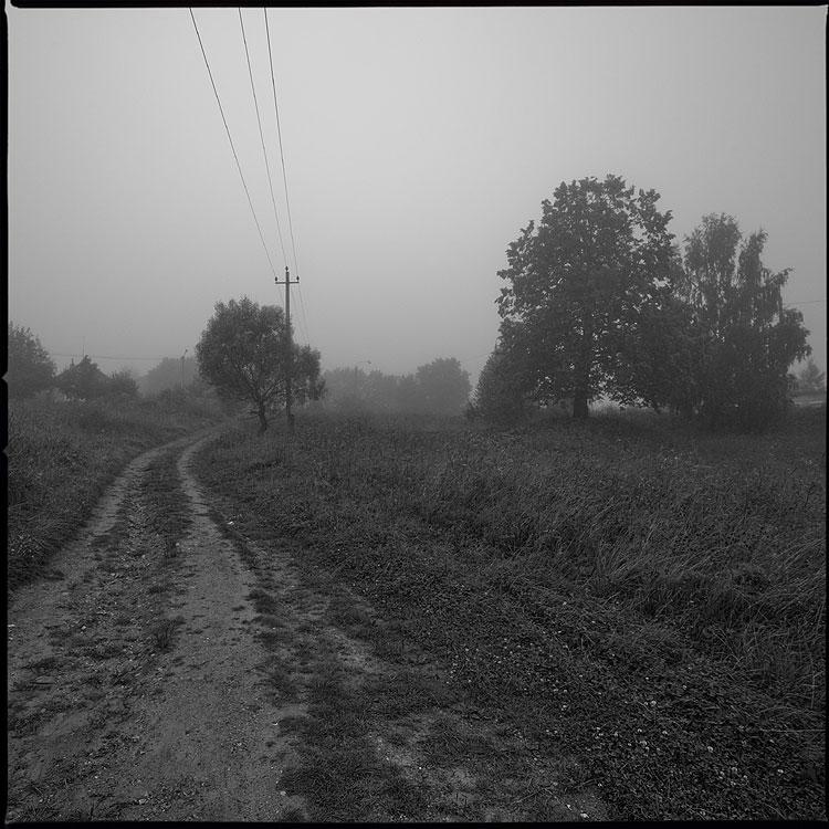 Не ищите ёжика, его здесь нет - туман ёжик деревня дорога столб природа подмосковье квадратное среднийформат фото фотосайт