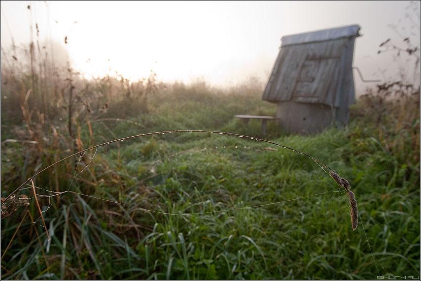 Воды глаток - колодец травинка деревня утро туман небо осень фото фотосайт