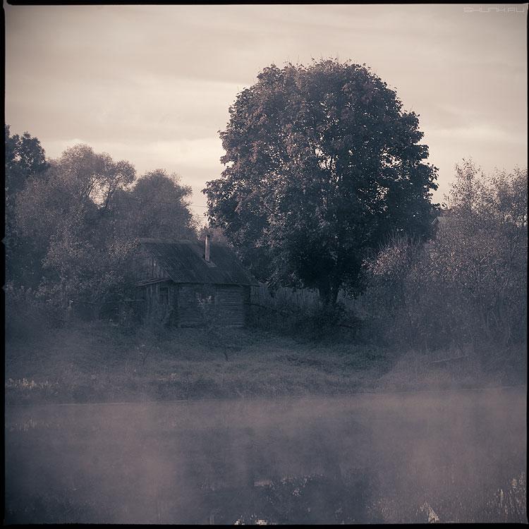 Банька - туман утро деревня дерево обработка среднийформат фото фотосайт